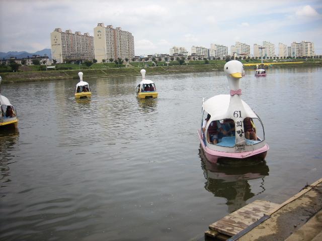 수상안전교육 및 오리배 체험2.jpg